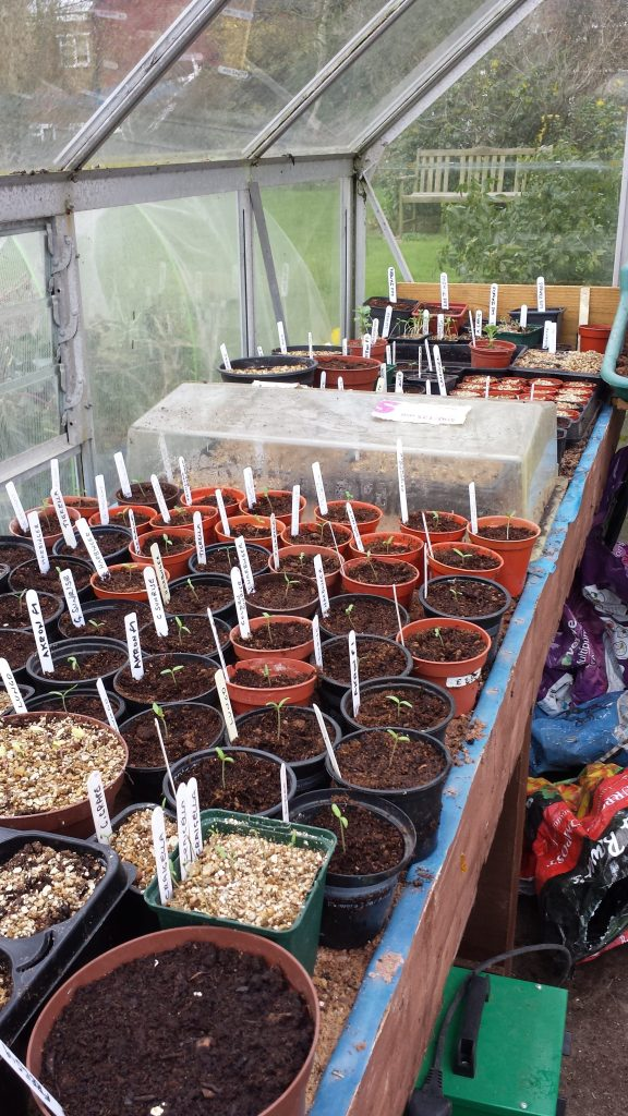 No room at the propagator