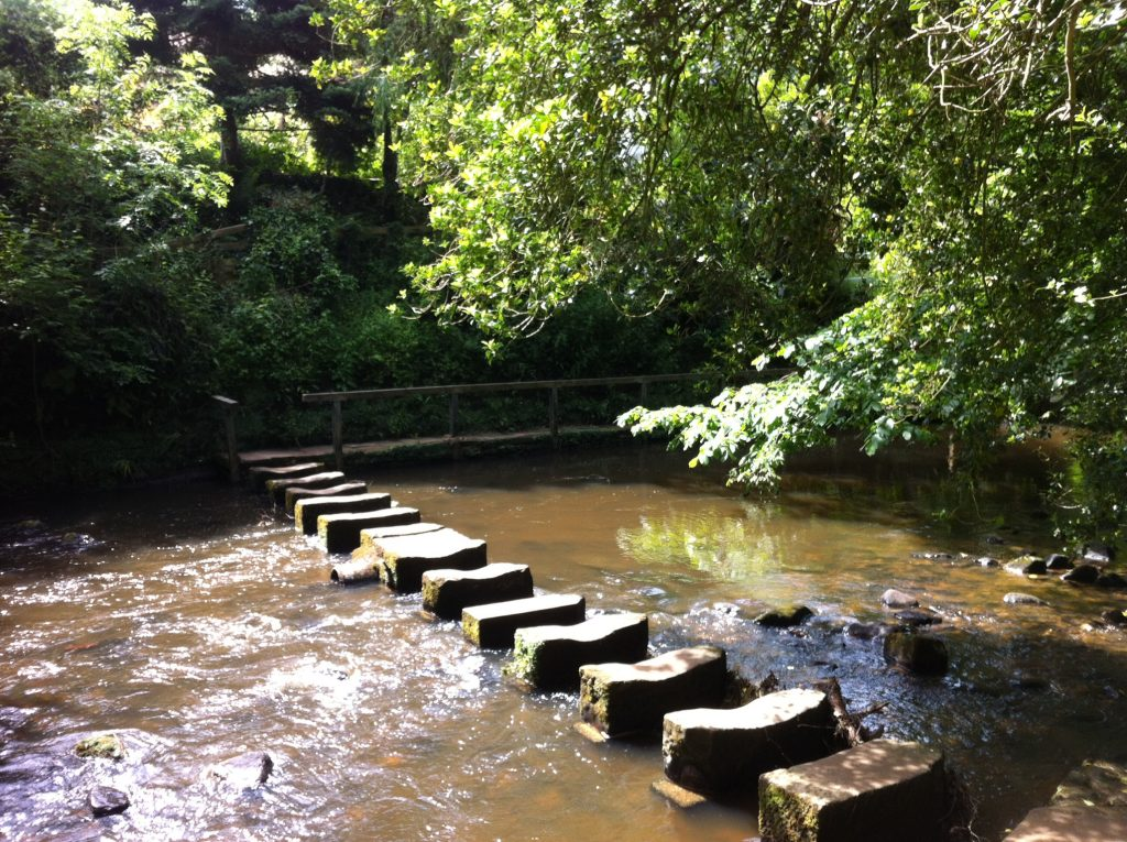 Egton Bridge Stepping Stones