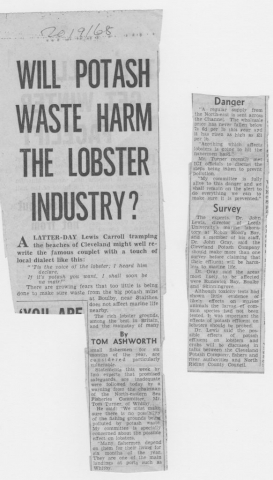There are questions about the effect of potash waste on Yorkshire lobster fisheries